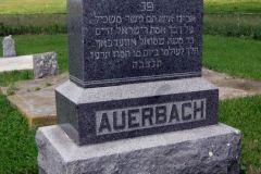 auerbachisraeltsdetail