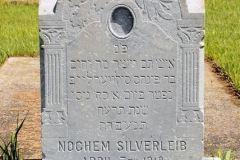 silverleibnochem
